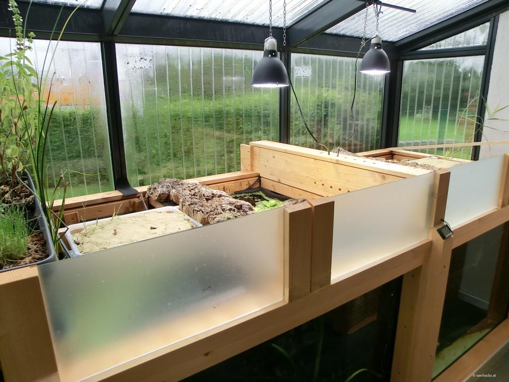 graptemys wintergarten f r h ckerschildkr ten. Black Bedroom Furniture Sets. Home Design Ideas