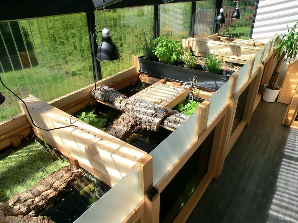 graptemys - wintergarten für höckerschildkröten